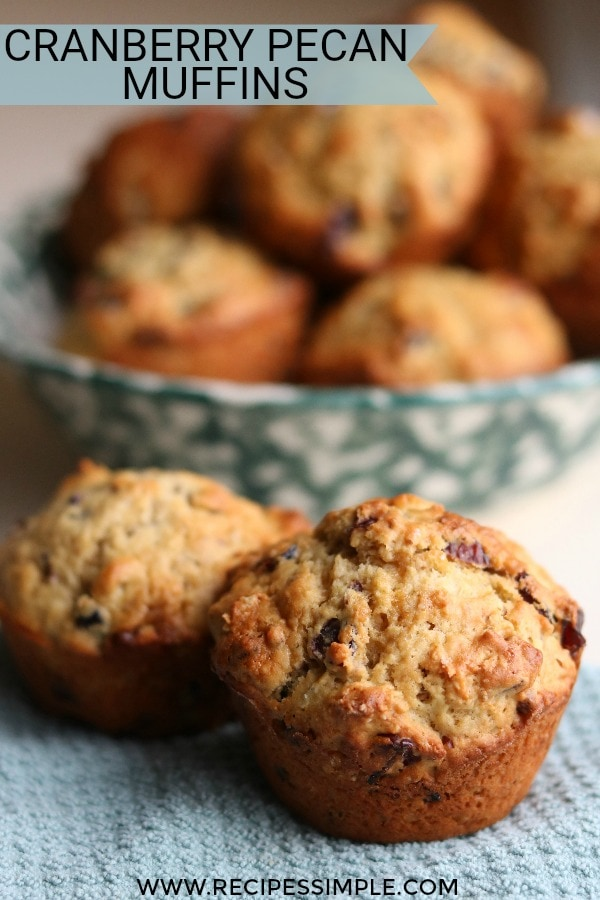 Easy Cranberry Pecan Muffins Recipe